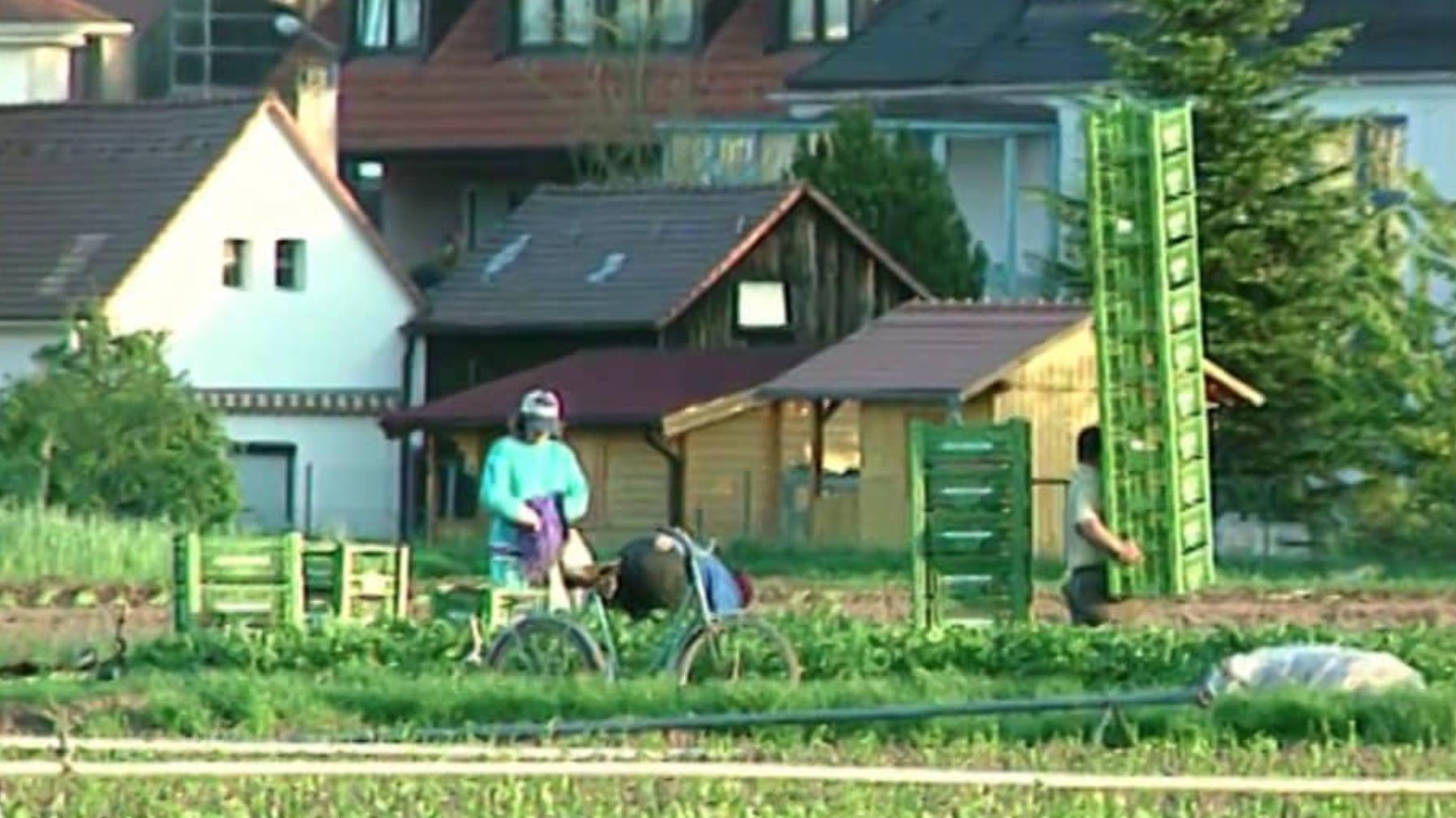 Kraftshof – ein Stadtteilportrait